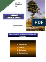 amidosmodificados2-121212130415-phpapp01