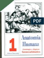 Anatomia PDF