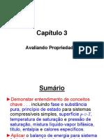Capítulo 3 Princípios de Termodinâmica para Engenharia