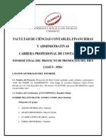 Informe Final de Proyecto de Promocion Del Bien Comun 2