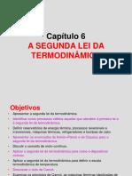 Capítulo 6 - A Segunda Lei Da Termodinâmica