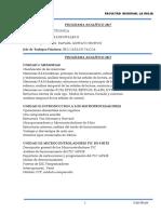 Programa Digitales II 2017