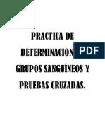 Practica de Determinacion de Grupos Sanguíneos y Pruebas Cruzadas