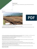 Industria incentivará sector lechero local.pdf