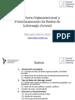 Estructura Organizacional y Funcionamiento de Redes de Liderazgo Juvenil