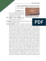 Taraises.pdf