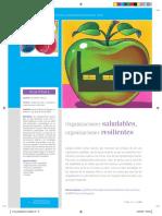 9 Organizaciones Saludables Organizaciones Resilientes OK