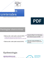 Anomalías-ureterales