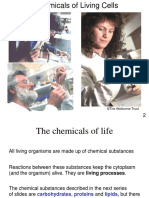 chemicals-of-life (1).ppt