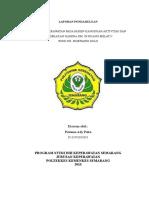LAPORAN PENDAHULUAN DM (KMB 1).doc