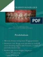Cfakepathhistologigigi Fkg2009 090623215558 Phpapp01