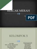 KELOMPOK 5-Modul 2 - Bercak Merah.pdf