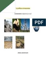 Les problèmes environnementaux.docx