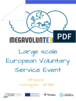 Large-scale European Voluntary Service (2)