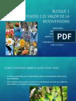 biodiversidad delfincito.pptx