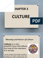 Chapter 3 Culture