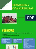 5 Programación y Evaluación Curricular