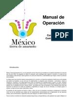 ManualTRY.docx