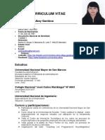 Andrea Alicia Albay Gamboa Curriculum Vitae 1