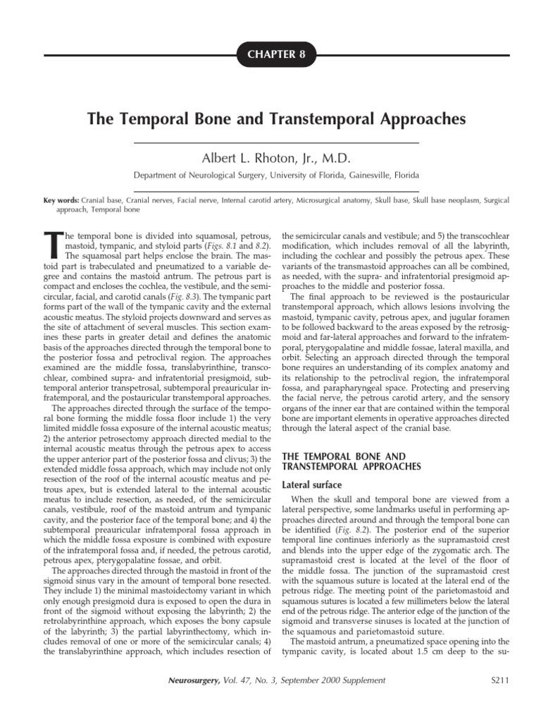 The Temporal Bone   Skeletal System   Anatomy