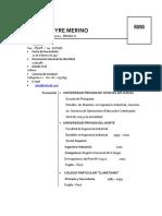 MODELO CV 2