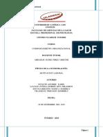 Informe de Comportamiento Organizacional