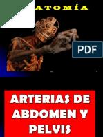 Cfc - Arterias Abdomen y Pelvis