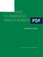 Cies-pandillas en El Siglo Xxi-56-105