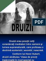 120060440-Druizii.pdf