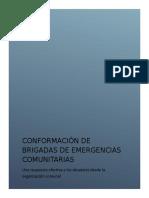 Proyecto Brigadas Comunitarias Ponencia