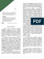 A PRATICA DO ROLEZINHO.docx