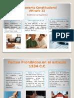 Fundamento Constitucional articulo 22.pptx