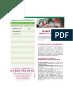 Dgproteccion Civil PDF Gmp12 (1)