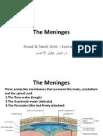 Arteri meninges