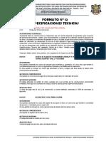 Formato 12 - Especificaciones Tecnicas