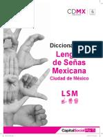 diccionario L S M.pdf