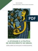 A Atividade e a Politica de Microcredito No Brasil 2014