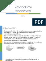 Metabolismo Microbiano I