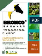 Empresa Bronco