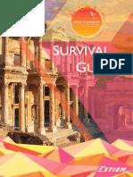 LV CM Izmir Economy - Survival Guide