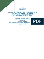 Atestat -Asamblarea sistemelor de calcul tip laptop.docx