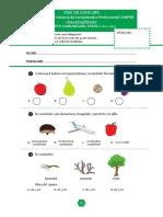Subiect_si_barem_LimbaRomana_EtapaI_Clasa0_12-13.pdf