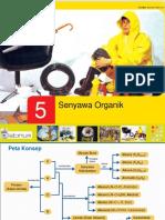 Bab 5_Senyawa Organik.ppt