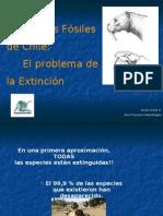 Extinciones Fosil Chile