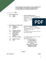 Informe Técnico del Consumo de Solventes y Combustibles