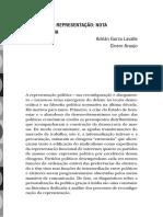 O FUTURO DA REPRESENTAÇÃO.pdf