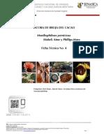 ESCOBA.pdf