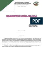 Diagnostico Inicial de Aula 2do Grado Seccion b