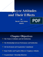 Employee Attitudes and Their Effects