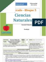 Plan 3er Grado - Bloque 5 Ciencias Naturales